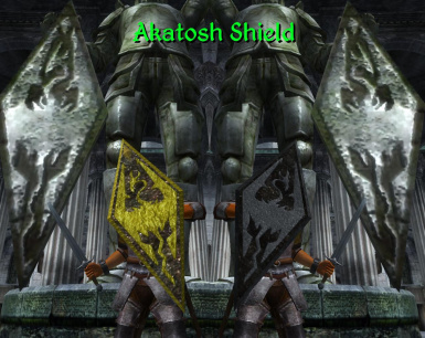 Akatosh Shield