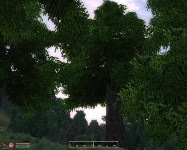 Under the sign of the dragon  -Tamriel Landscape Pack -