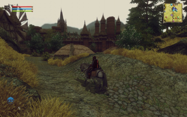The Witcher in Oblivion