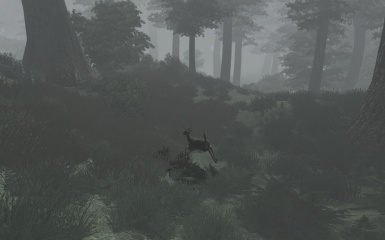 Run fast as a deer