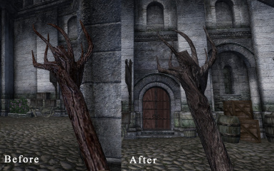 Before and After 2