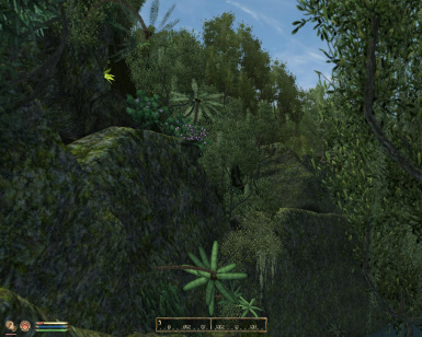 Under the sign of the dragon - Tamriel Landscapes -