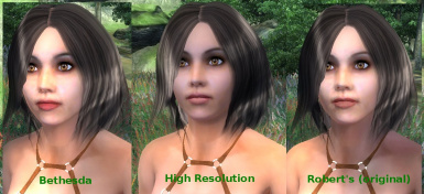 High Resolution Faces for Roberts Male and Female
