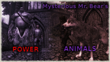 Mysterious Bears Power Animals