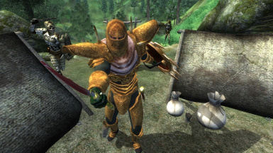 Maskar's Oblivion Overhaul at Oblivion Nexus - mods and community