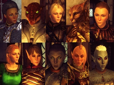 Oblivion Character Overhaul version 2