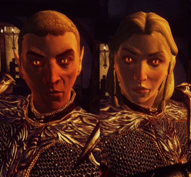 Oblivion Character Overhaul version 2 at Oblivion Nexus - mods and