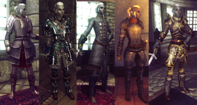 Assorted Protective Female Armors