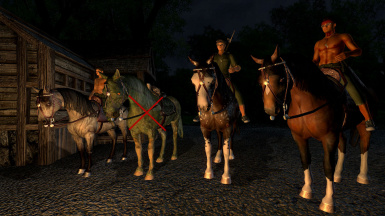 Horses for Companions
