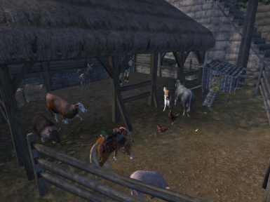 ponies donkeys cows pigs and chickens