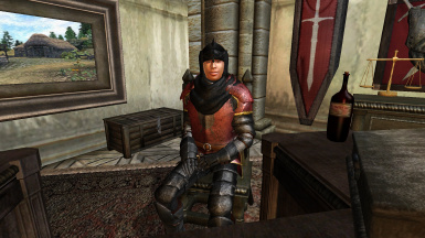 The United Fighter's Guilds of Cyrodiil