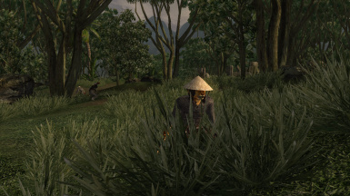Bandits in the grass