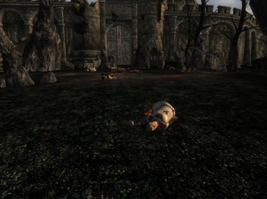 Outside the Kvatch gate