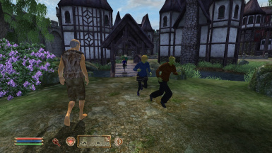 Running around in Cheydinhal