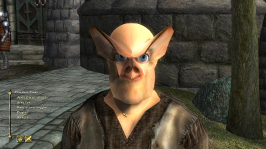 Distorted Face Overhaul (for fun only)