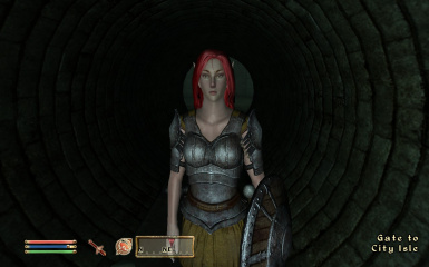 Namarie - Bosmer(Wood Elf) saved game