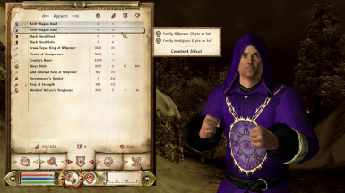 Balanced Arch-Mage Robes and Hood Enchantment