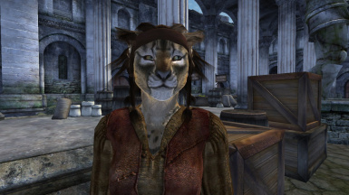 Darker Khajiit Hair