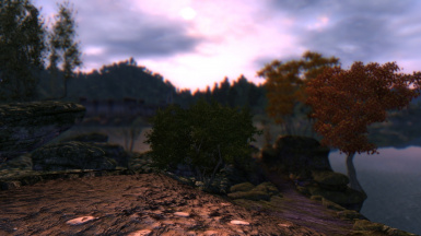 The Brave New World ENB