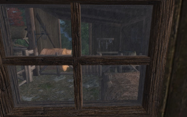 Looking through the stable window