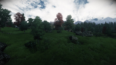 Grass Texture for QTPIII and DTII