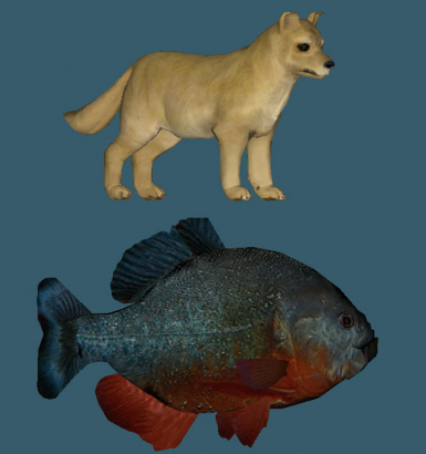 Piranha and Puppy Resource