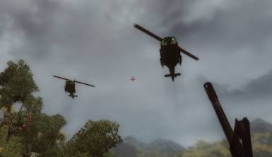 Helicopters Fly By