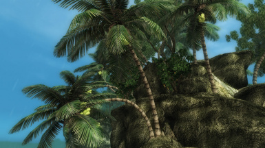 New Palms for Valenwood Improved
