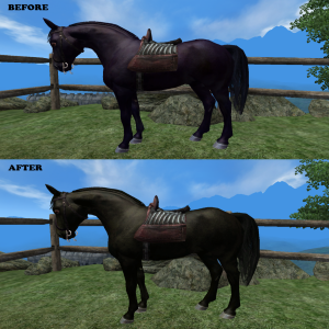 Black Horse Color Overhaul