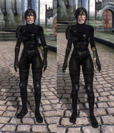 Demo Photo courtesy of Heroic Female Idle Replacer by nuska
