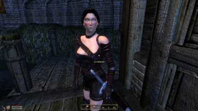 Sexy Armor For Sale