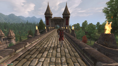 Helms for Skingrad