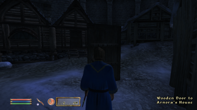 No bug from this mod though... (Door to Arnora's house)