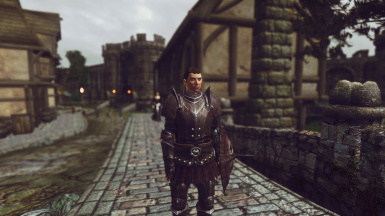 Zensalin's Oblivion Overhaul at Oblivion Nexus - mods and community
