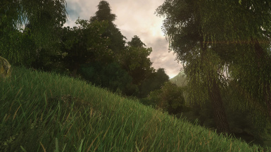 Simple ENB for All Natural