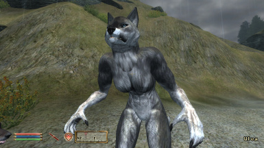 Werewolf Followers (ESO inspired)