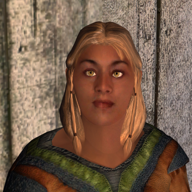 Oblivion Upscaled Textures (OUT)