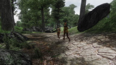 Antus and Rallus Odiil during the quest 'The Killing Field' (travelling to Odiil Farm to fight the goblins)