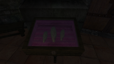 2 - Vanilla Textures in the Arch Mages Lobby