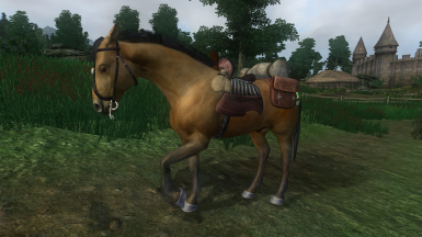 Simple Horse Utilities - Saddlebags and Follow-Wait Commands