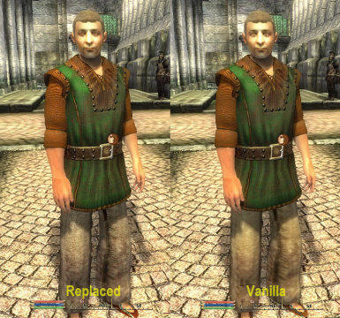 Mikes Clothes Replacer v11
