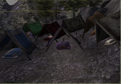 Bedrolls and Tents Anyone