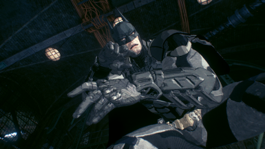 Animated Batman Skin
