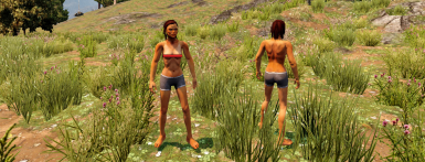 PitMonks Topless Female Players 1.0
