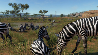 More Animals - Africa v1.1