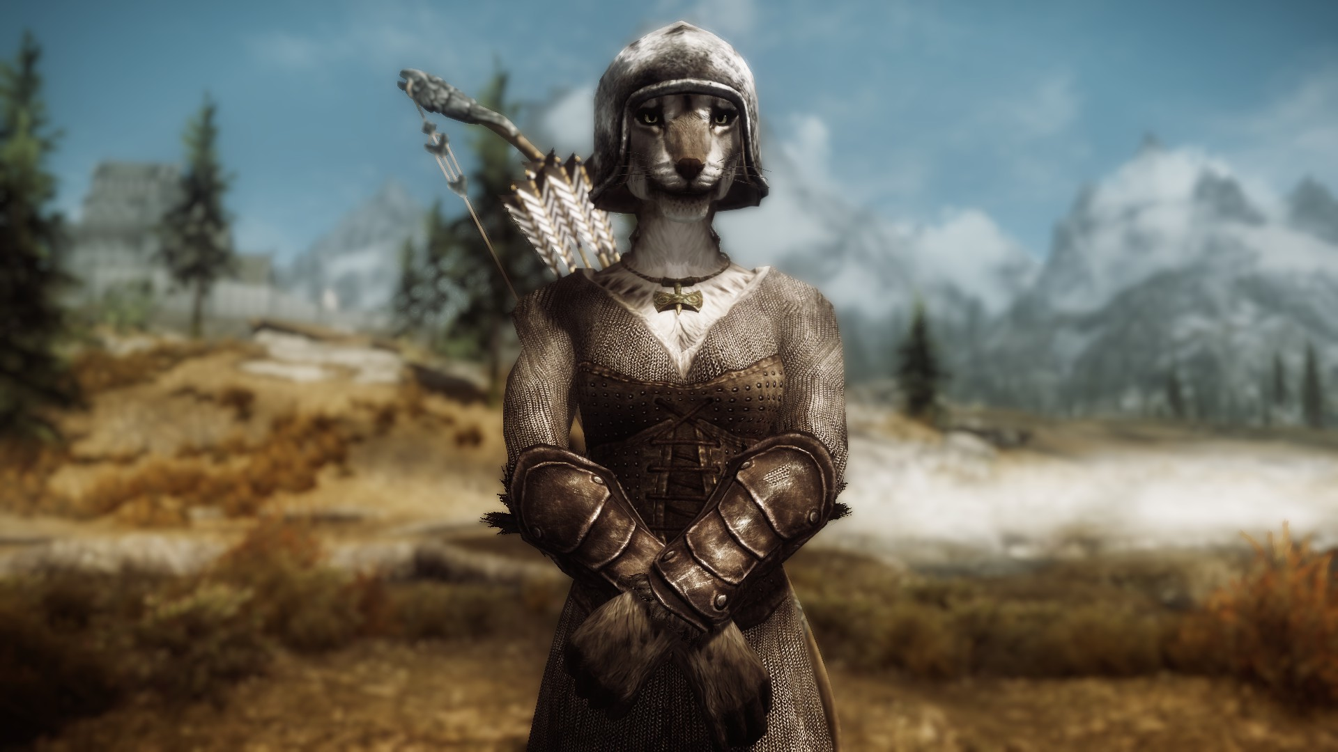 Viking Chainmail Armor at Skyrim Nexus - mods and community | 1920 x 1080 jpeg 258kB