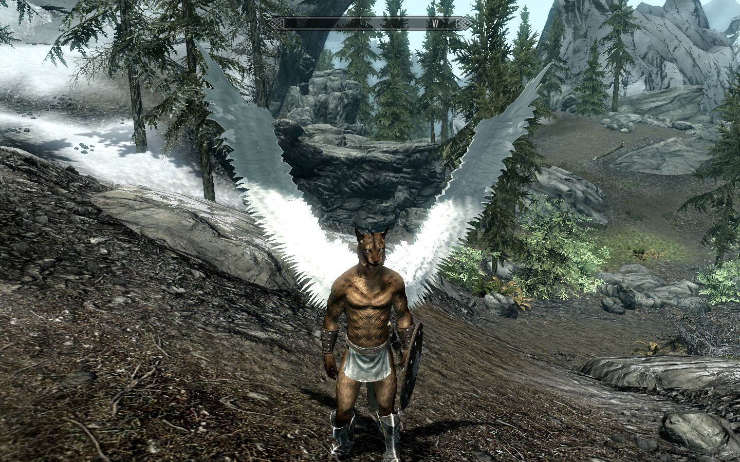 What skyrim race are you