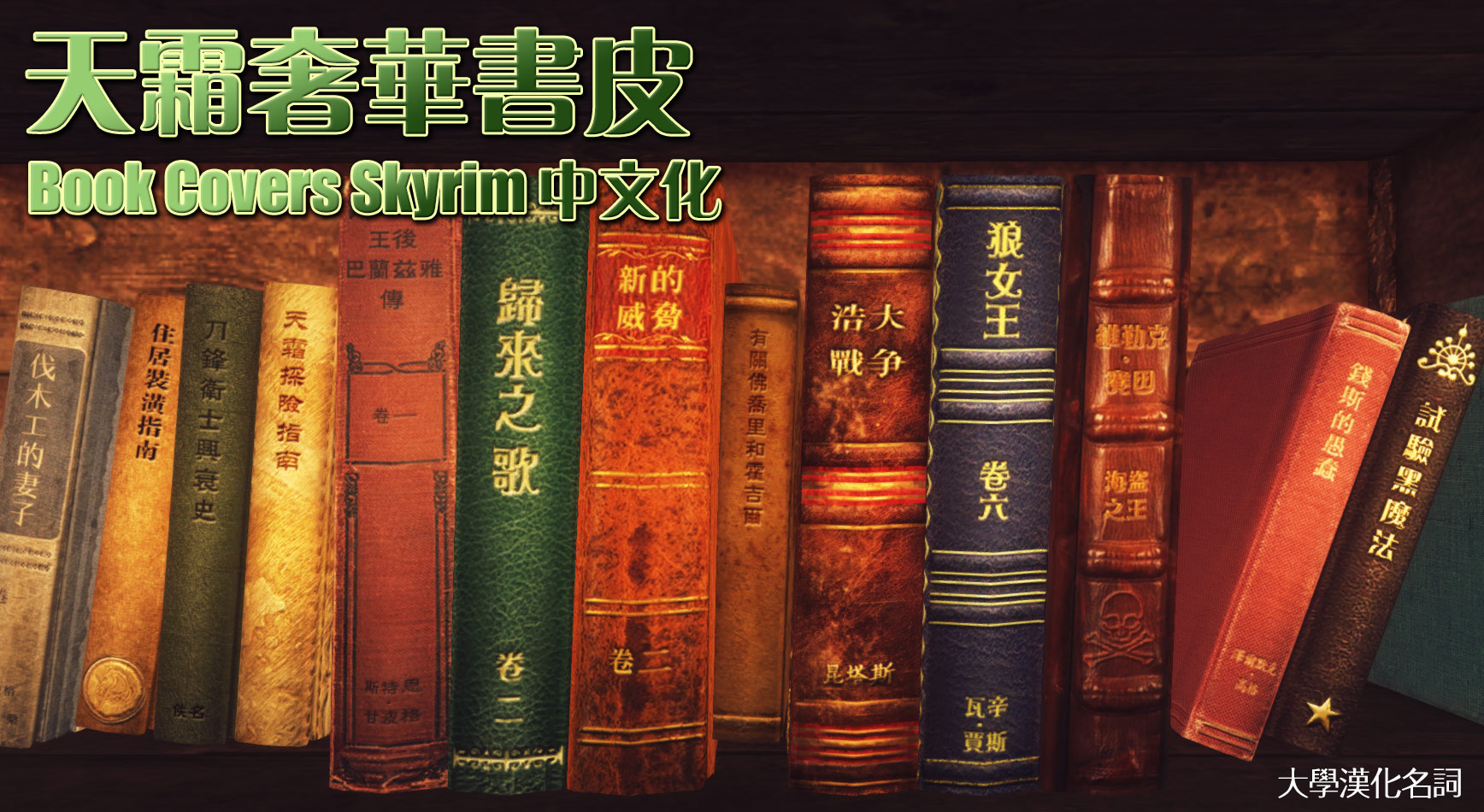 Book Covers Skyrim : Book covers skyrim chinese edition at nexus mods