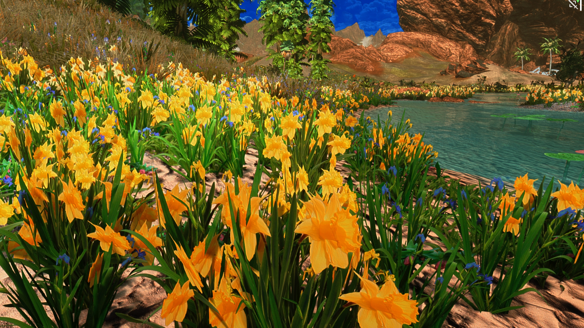 Plants for spring and summer - Tropical Spring Summer Grasses And Plants At Skyrim Nexus Mods And Community