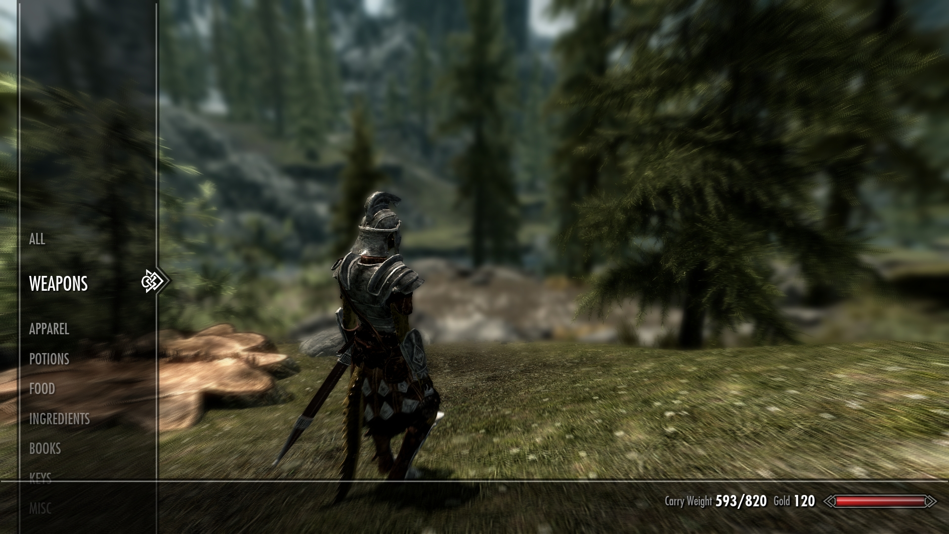 how to set carry weight skyrim